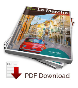 Magazine (PDF download)